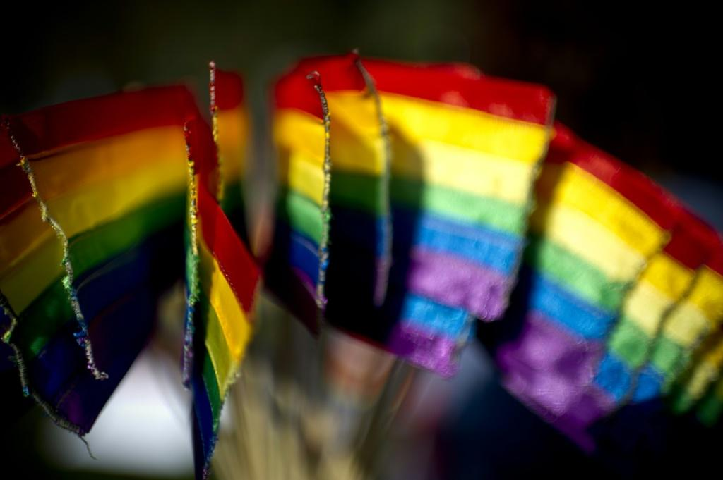 Same-sex marriage is legal in six Latin American and Caribbean United Nations member countries, as well as several states of Mexico, according to a 2020 report by the International Lesbian, Gay, Bisexual, Trans and Intersex Association (ILGA)