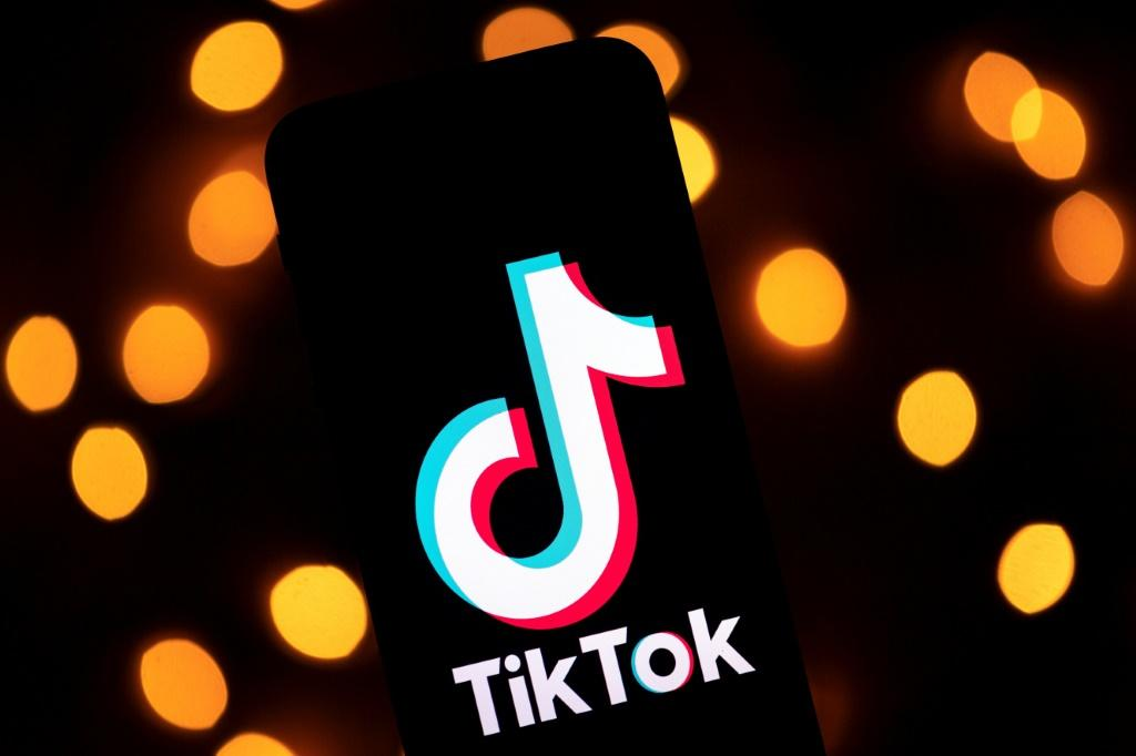 TikTok has been blocked again in Pakistan after being accused by authorities of hosting inappropriate content