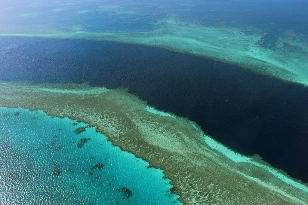 The Great Barrier Reef is the world's largest living structure