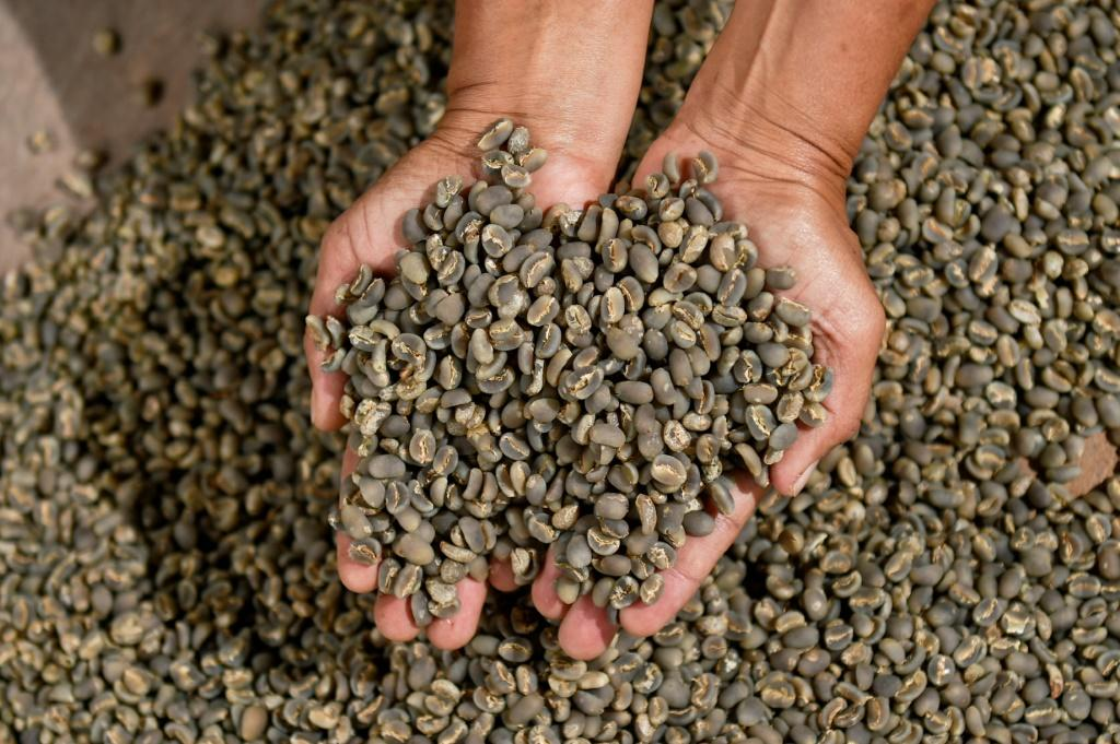 Arabica coffee soared to its highest level since 2014