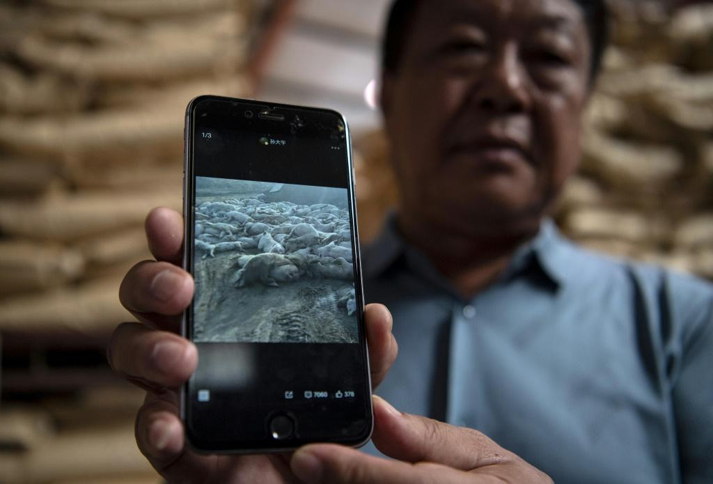 Sun Dawue has been a vocal champion of rural reforms and a whistleblower during a devastating swine fever outbreak in 2019, posting photos of dead pigs online after local officials were slow to respond to the disease