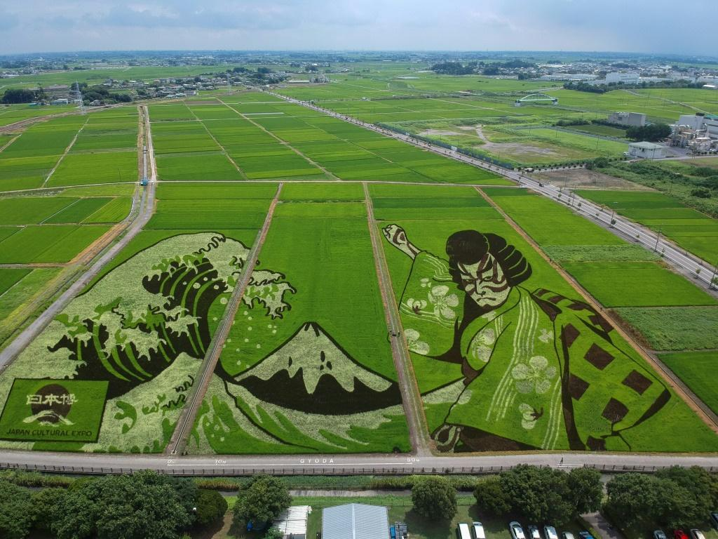 The rice field artwork is intended to highlight Japan's cultural heritage