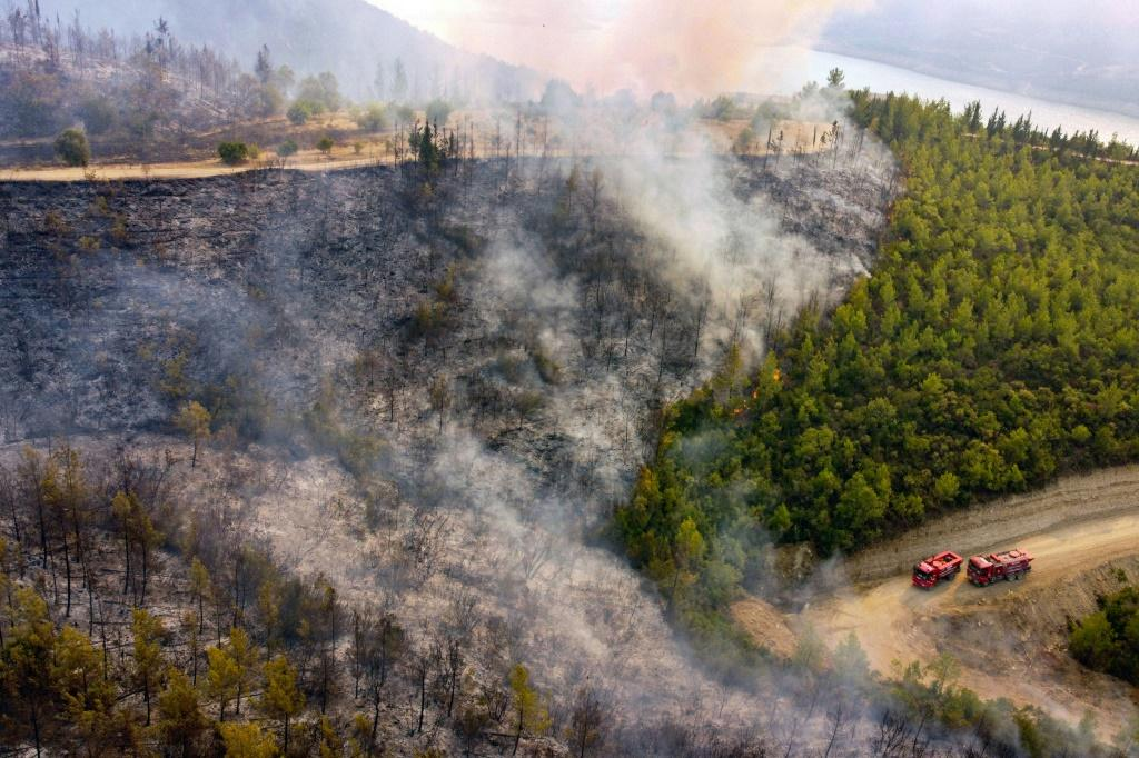 Agriculture and Forestry Minister Bekir Pakdemirli said 107 of 112 forest fires were now under control, but blazes continued in the holiday regions of Antalya and Mugla