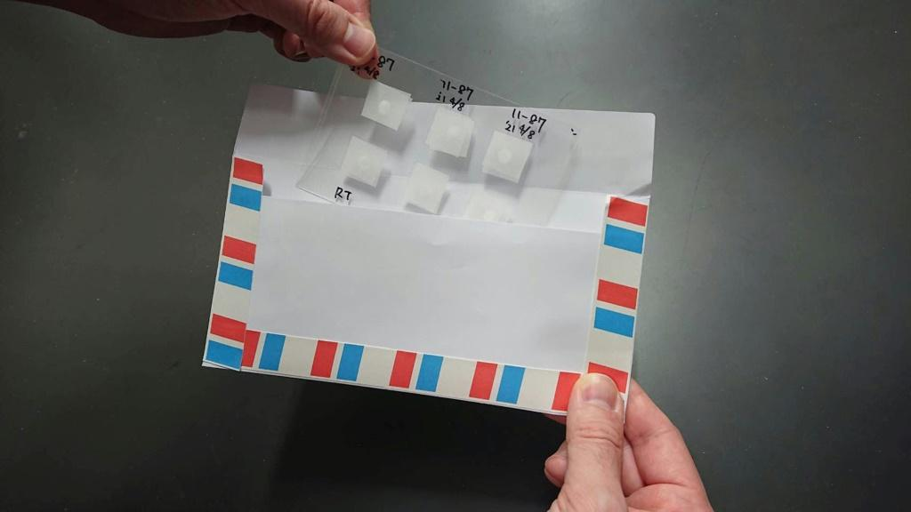 Researchers in Japan have developed a way to freeze dry rodent ejaculate between thin plastic sheets and sticky tape it to postcards, with the samples surviving long journeys to produce healthy pups