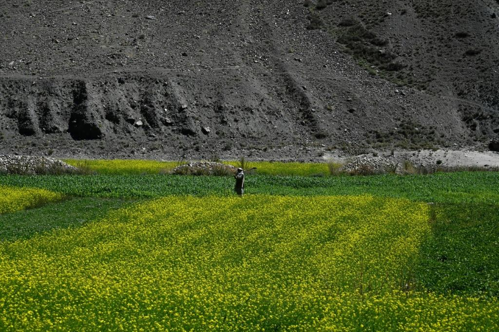 The Panjshir Valley is mostly deserted after the Taliban took control of the last province resisting their rule