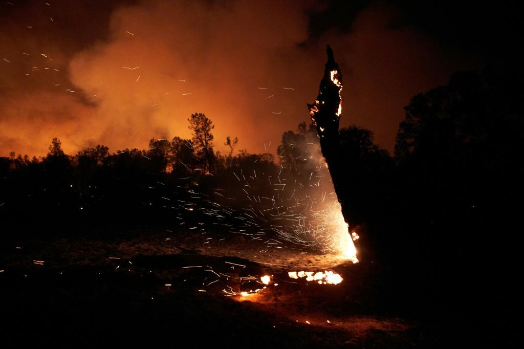 The Zogg Fire burned 56,000 acres and killed four people after it was sparked by a power line in September 2020