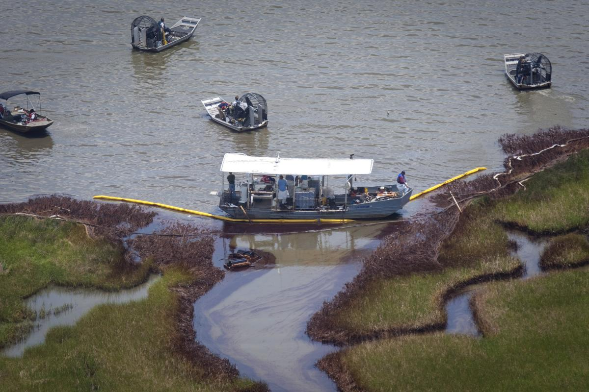 Bp Oil Spill Louisiana Wetland Loss Is Speeding Up Due To