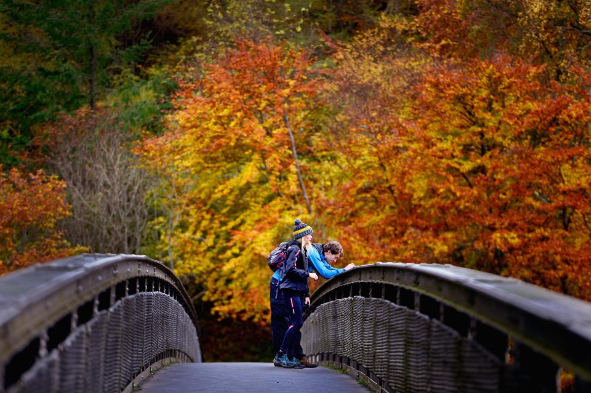 Fall Facts And Trivia: 18 Things To Know About The Autumnal