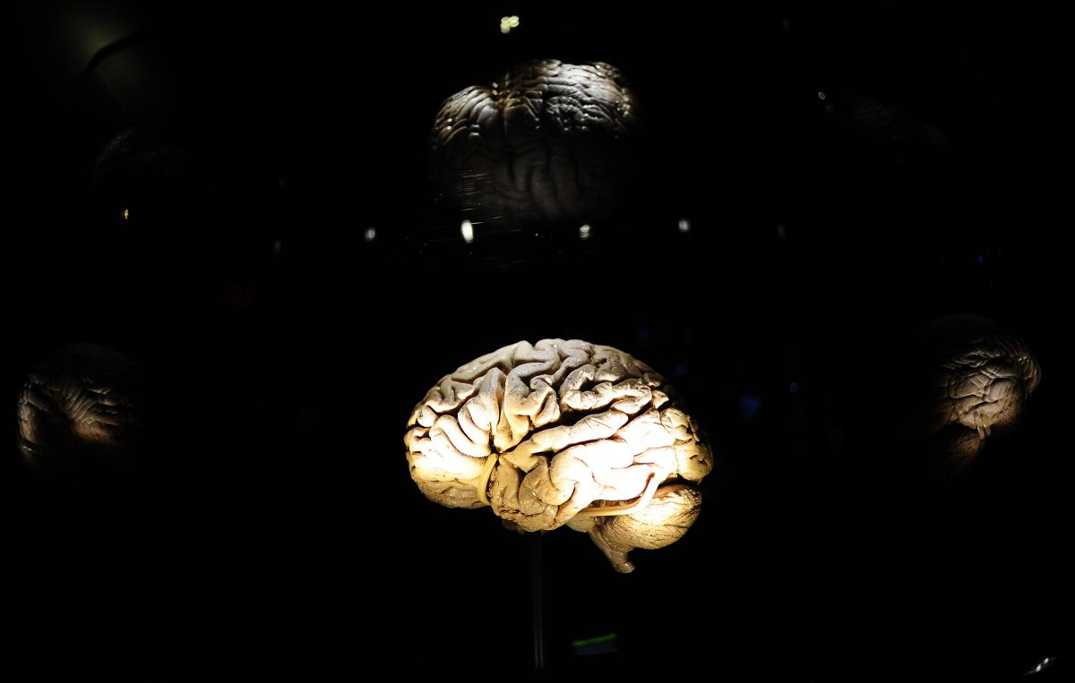 What Is Consciousness? Self-Awareness May Be A Side Effect Of Brain Trying To Maximize Entropy, Researchers Say