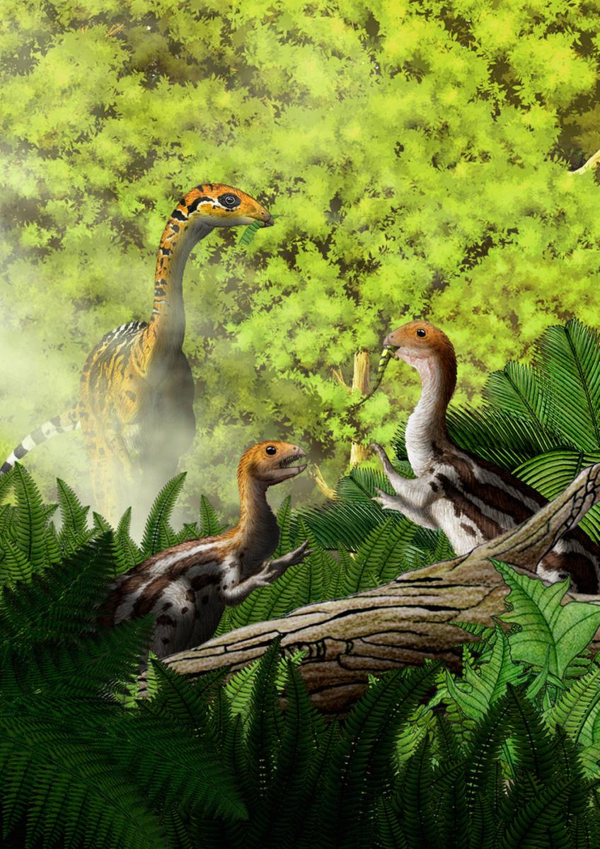 This Dinosaur Lost Its Teeth And Grew A Beak As It Grew From Juvenile To Mature