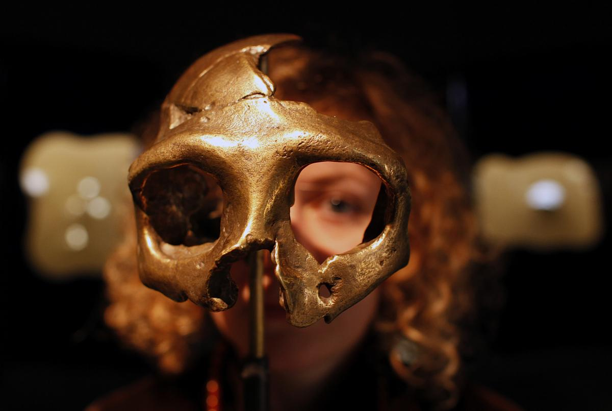 Neanderthal DNA In Modern Human Genome Is Still Affecting Our Gene Expression