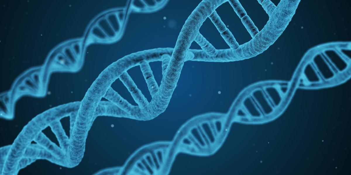 Why Do Some People With Autism Have >> Why Do Some People Get Autism Genes Linked To Development Of