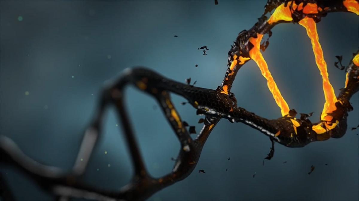Scientists Watch DNA Copy And Paste Itself For The First Time