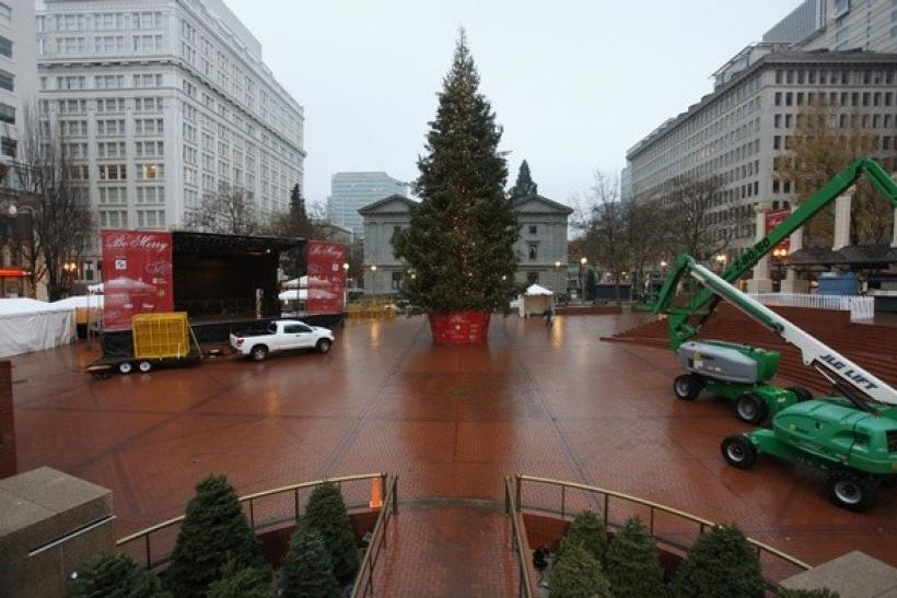The Christmas tree, target of Somali-born Osman Mohamud, is seen in Pioneer Courthouse Square in Portland, Oregon, November 27, 2010
