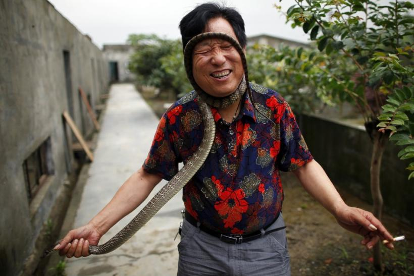 China's Snake Town (1 of 6)