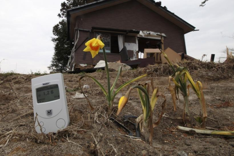 Radiation in Japan soil outside nuclear evacuation zone prompts evacuation of Fukushima city