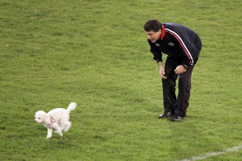 Miguel Brindisi, head coach of Mexico's Atlas, watches a dog during a training session at Velez Sarsfield stadium in Buenos Aires