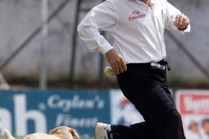 Australian umpire Darrel Harper chases off Stray Dog at second test between Sri Lanka and New Zealand in Kandy.