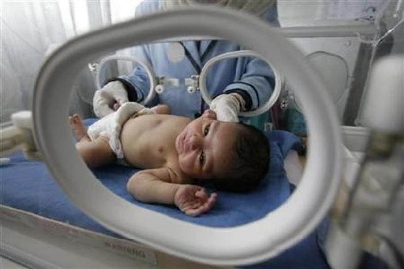 A nurse looks after a premature baby inside an incubator