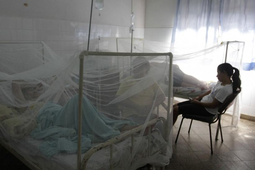 Patients lie under mosquito bed nets