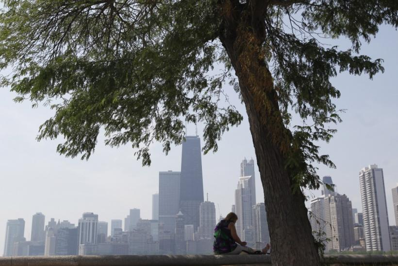 A woman sits in the shade under a tree along the water near North Avenue Beach in Chicago