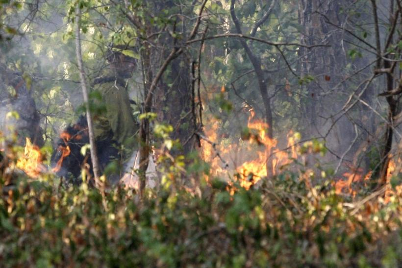 A U.S. forestry worker watches a controlled burn created to seal off a wildfire's path as it approaches a house near Bastrop, Texas September 6, 2011.