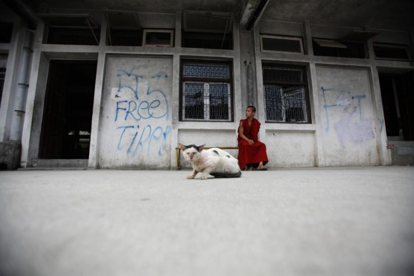 "A Tibetan monk sits next to a ""Free Tibet"" graffiti near a cat during a hunger strike in Kathmandu"