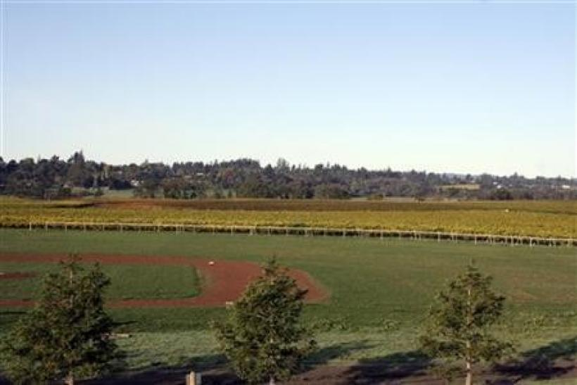A baseball field is surrounded by vineyards at Balletto Vineyards winery in Sonoma County, California in this undated handout photo.