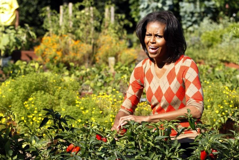U.S. first lady Michelle Obama harvests the White House Kitchen Garden during the fall season in Washington