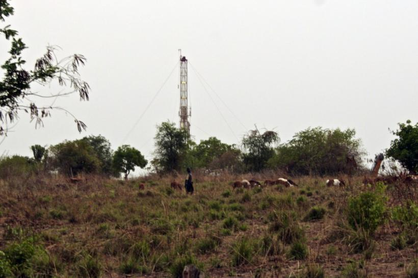 A boy herds goats in front of a Tullow Oil drilling rig in Bulisa, in the Bunyora region of Uganda
