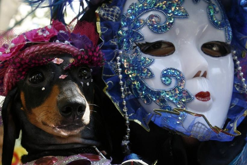 Accessorize your costume with your pet