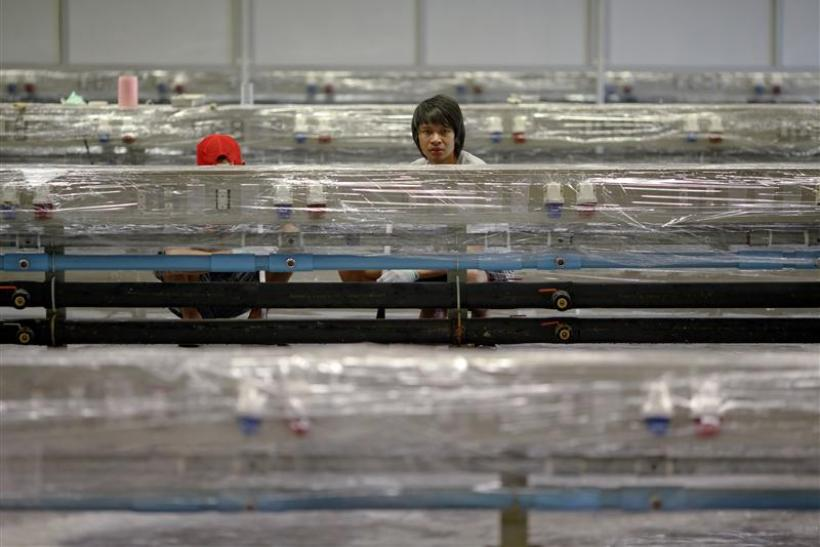 Workers of Hana Microelectonics Pcl clean a hall after water receded from parts of the factory in Ayutthaya province