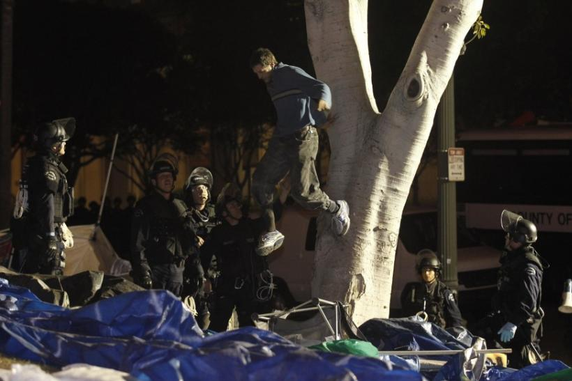 Los Angeles Police officers arrest a demonstrator who camped out in a tree as they dismantle the Occupy LA encampment outside City Hall in Los Angeles