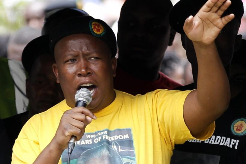 Malema wins ANC executive committee position