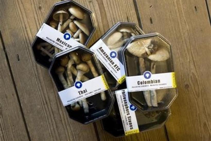 Boxes containing magic mushrooms are displayed at a coffee and smart shop in Rotterdam November 28, 2008.