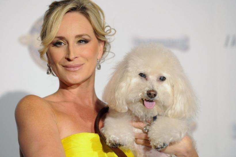 """Real Housewives of New York"" star Sonja Morgan and her dog Millou arrive at the first annual Golden Collar Awards celebrating Hollywood's most talented canine thespians from Oscar nominated films and Emmy Award winning television shows in Los A"