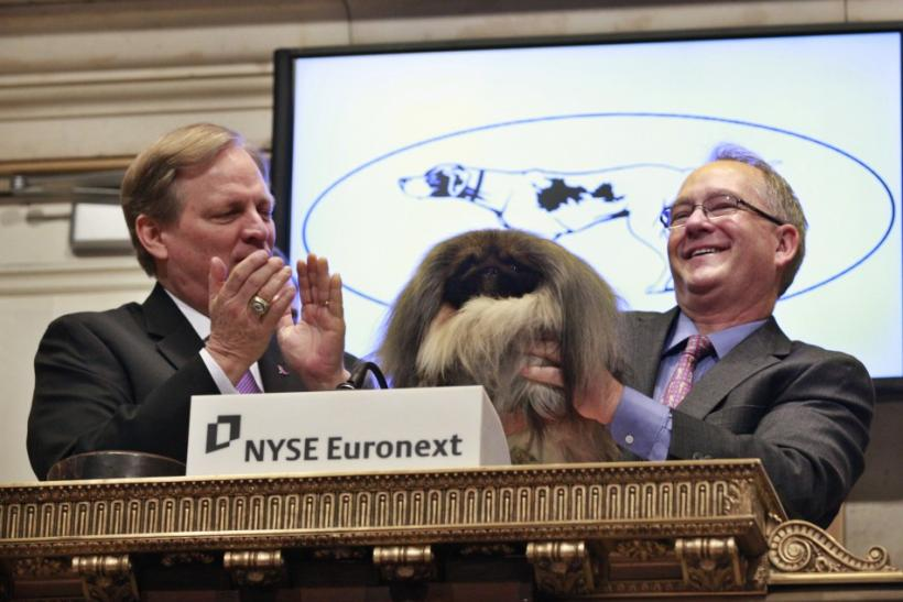 Malachy, winner of the Best-in-Show honor at the 136th Westminster Kennel Club Dog Show -- and owner David Fitzpatrick, right -- ring the opening bell at the New York Stock Exchange on Thursday.