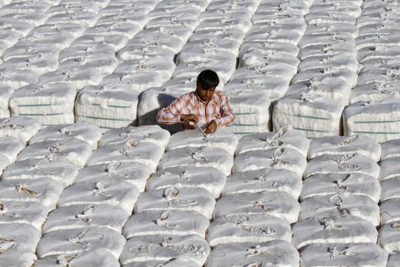 A trader checks stacked boxes of cotton inside a cotton processing unit at Kadi