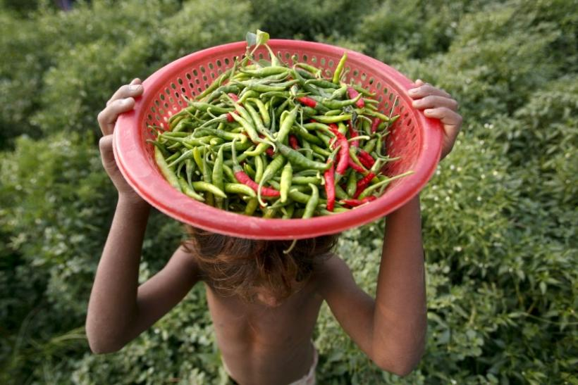 Chili Peppers May Lower Cholesterol And Improve Blood Flow