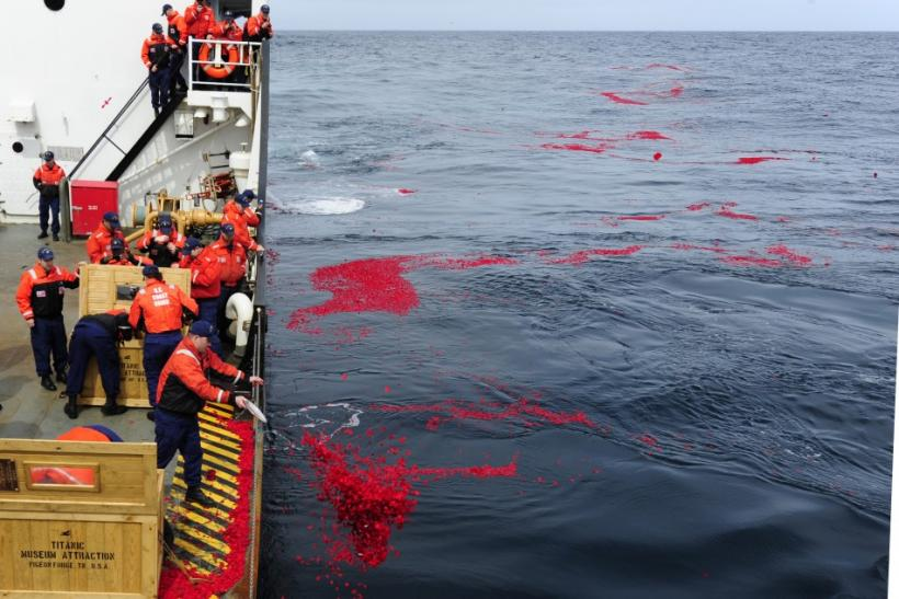 U.S. Coast Guard Cutter Juniper crew members lay 1.5 million dried rose petals over the RMS Titanic's resting site in the north Atlantic Ocean