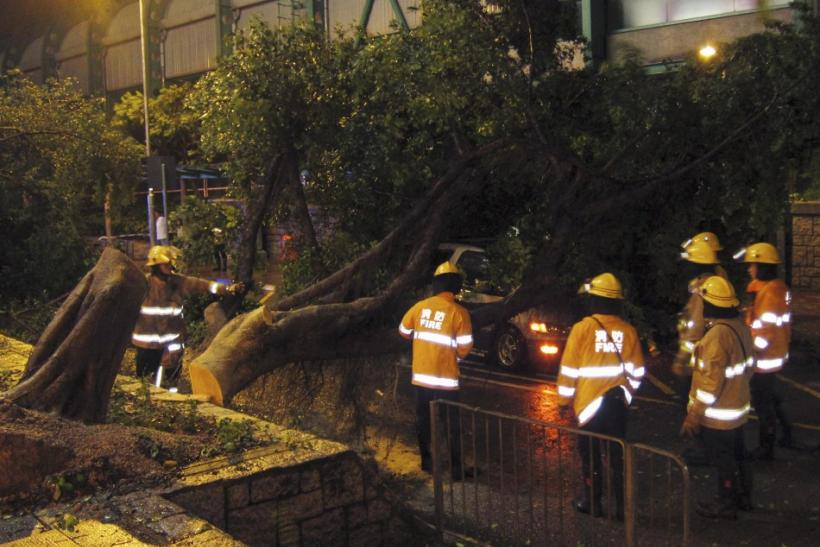 Firemen Trying to clear a Tree From The Top of a Car. The Trunk fell As a Result of The Strong Winds Due to Typoon Vincent in Hong Kong