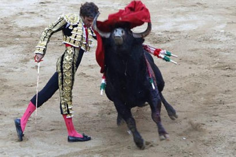 Bullfighter In Spain