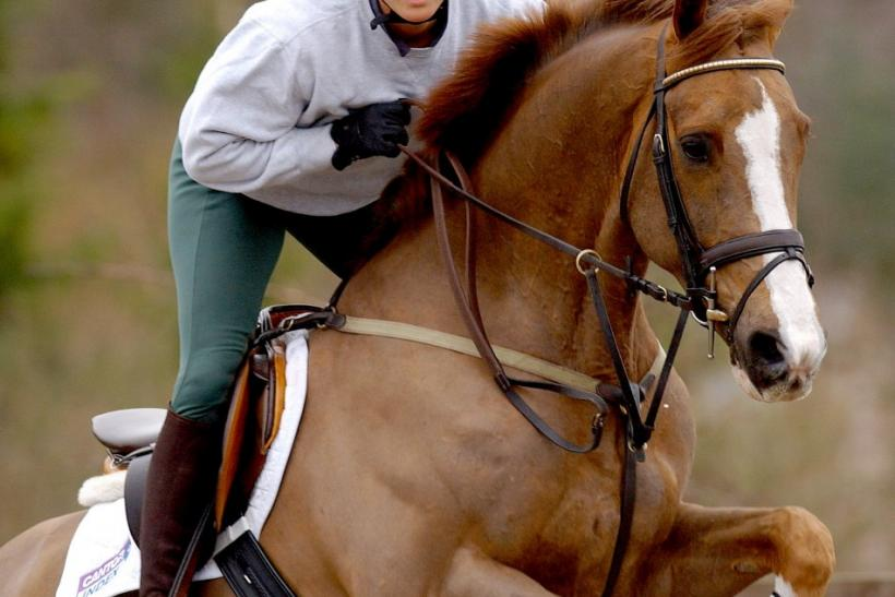 British Olympic hopeful Zara Phillips, the granddaughter of Britain's Queen Elizabeth II, jumps as she rides 'Ardfield Magic Star' during a training session at Waresley Park Stud Farm, in southern England, February 11, 2004. Phillips is aiming to be selec