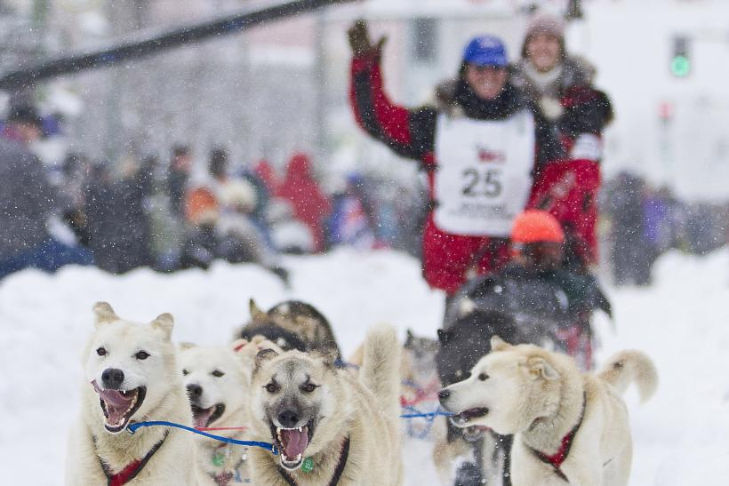 Paul Gebhart of Kasilof, Alaska at the 40th Iditarod