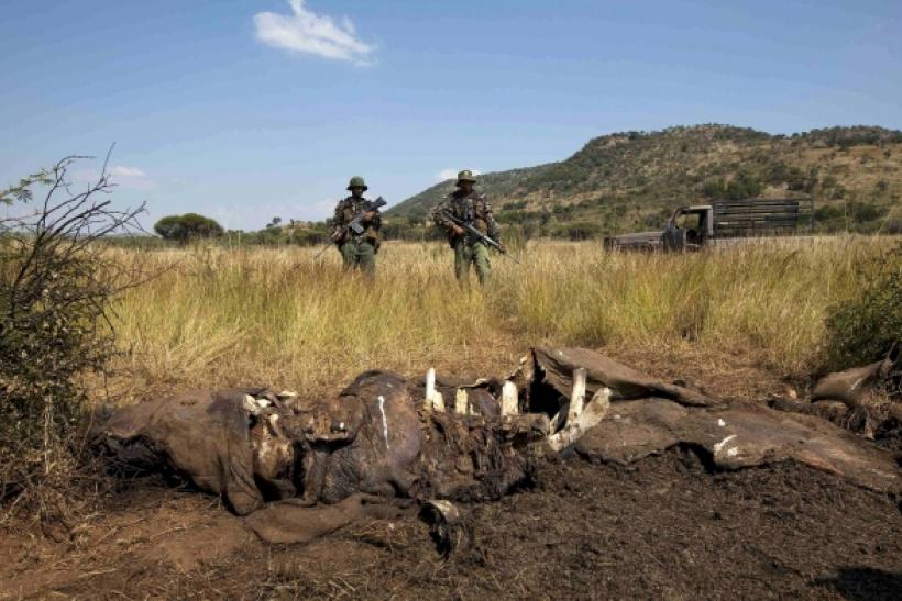 South Africa Helicopter Patrolling For Rhino Poachers Crashes Killing 5 Air Force Members