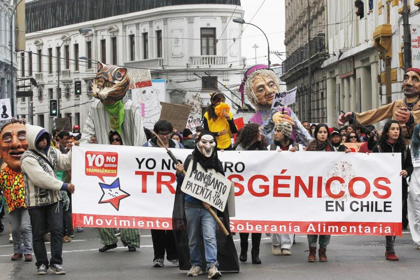 March Against Monsanto-Valparaiso, Chile-1A