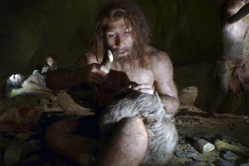 neanderthal-eat-animal-stomachs