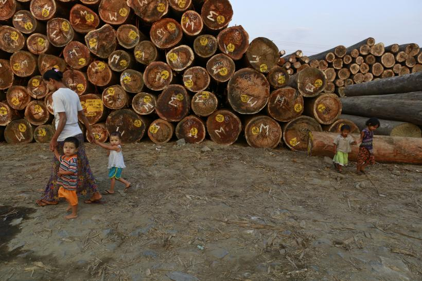Myanmar Imposes Export Ban To Stop Its Timber From Foreign