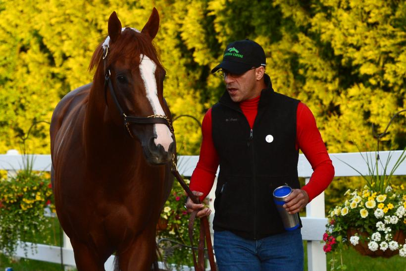 California Chrome_Preakness Winner