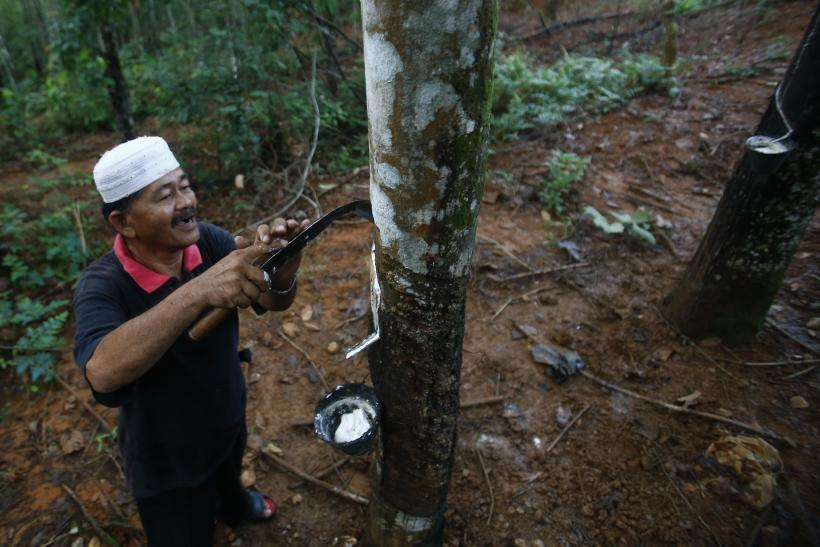 Natural Rubber Production Malaysia